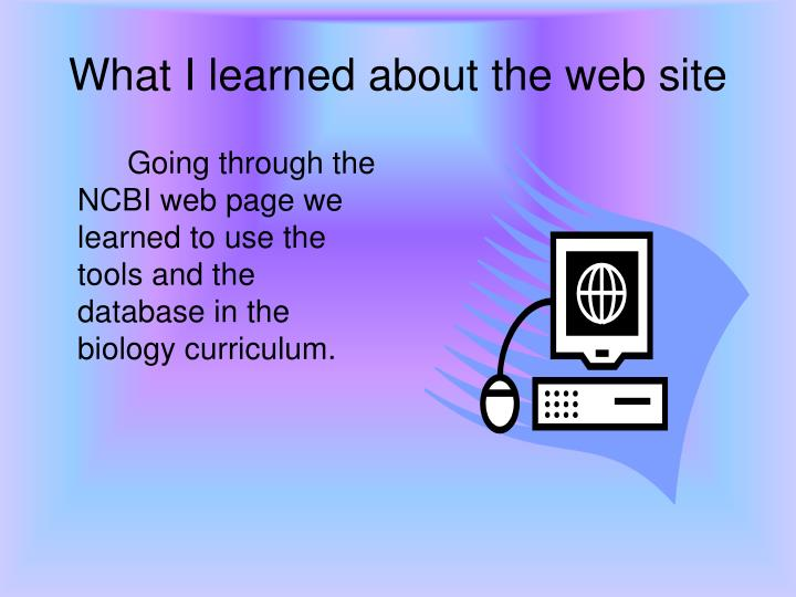 What I learned about the web site