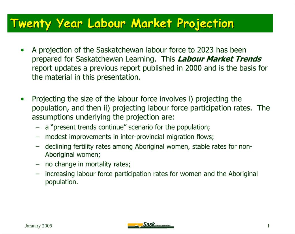 Twenty Year Labour Market Projection