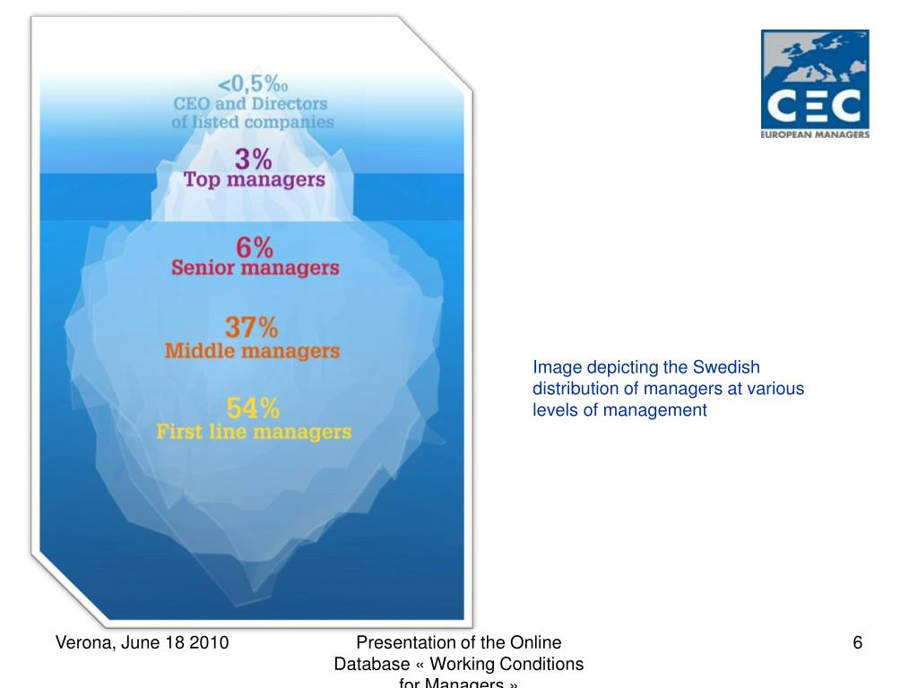 Image depicting the Swedish distribution of managers at various levels of management
