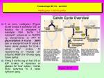 forelesninger bi 101 v r 2003 reaksjoner i calvin syklus