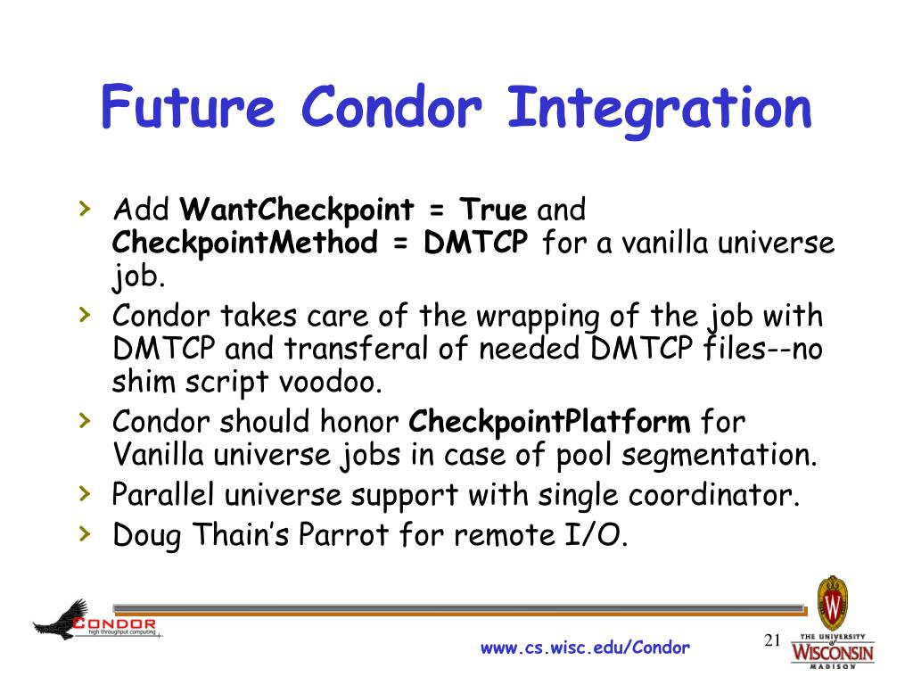 Future Condor Integration