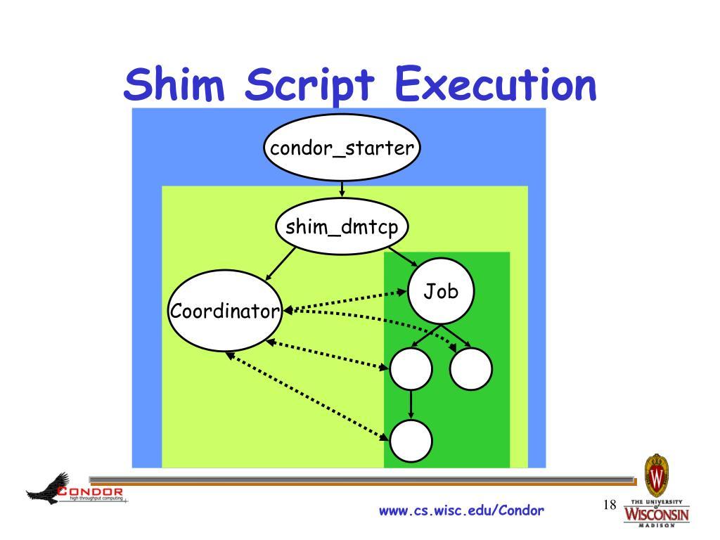 Shim Script Execution