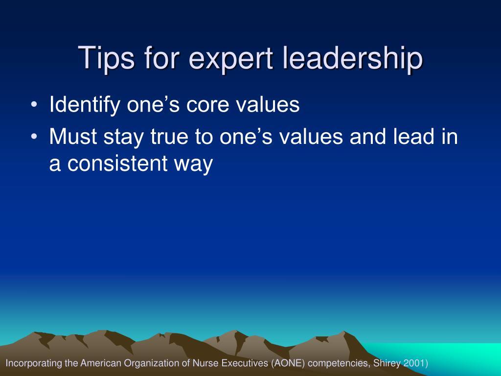 Tips for expert leadership