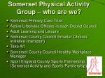 somerset physical activity group who are we