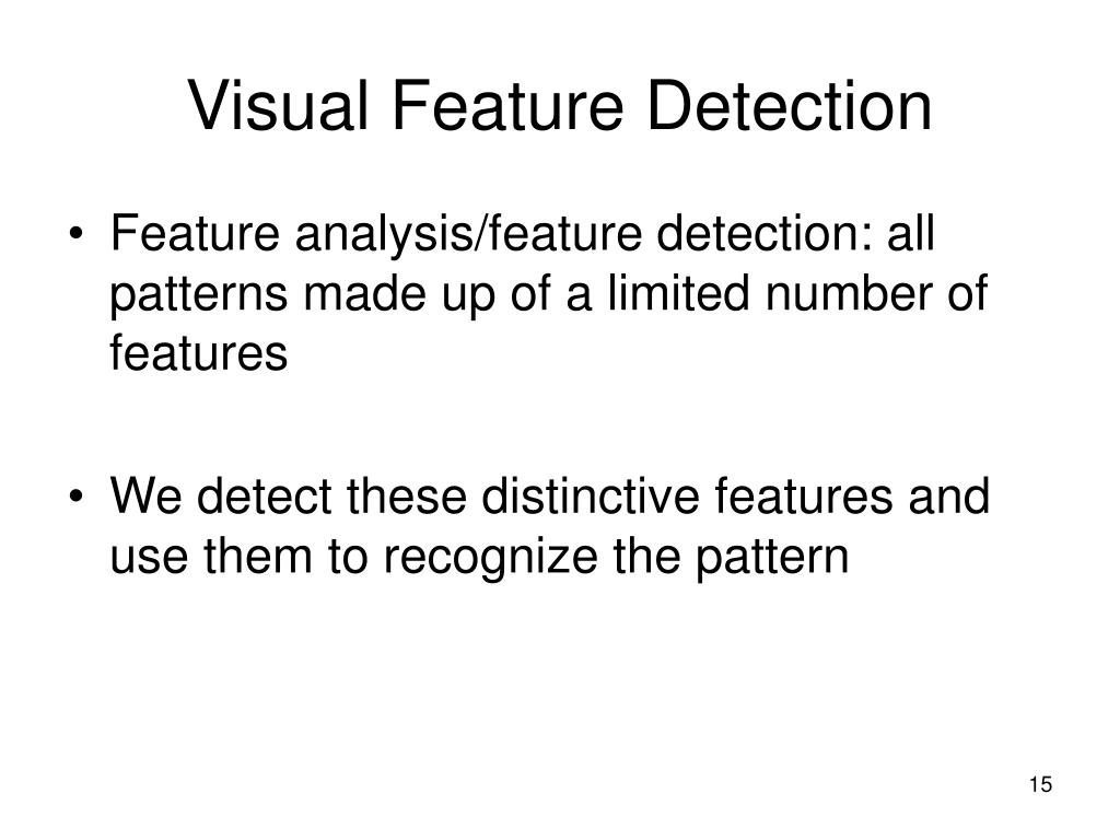Visual Feature Detection