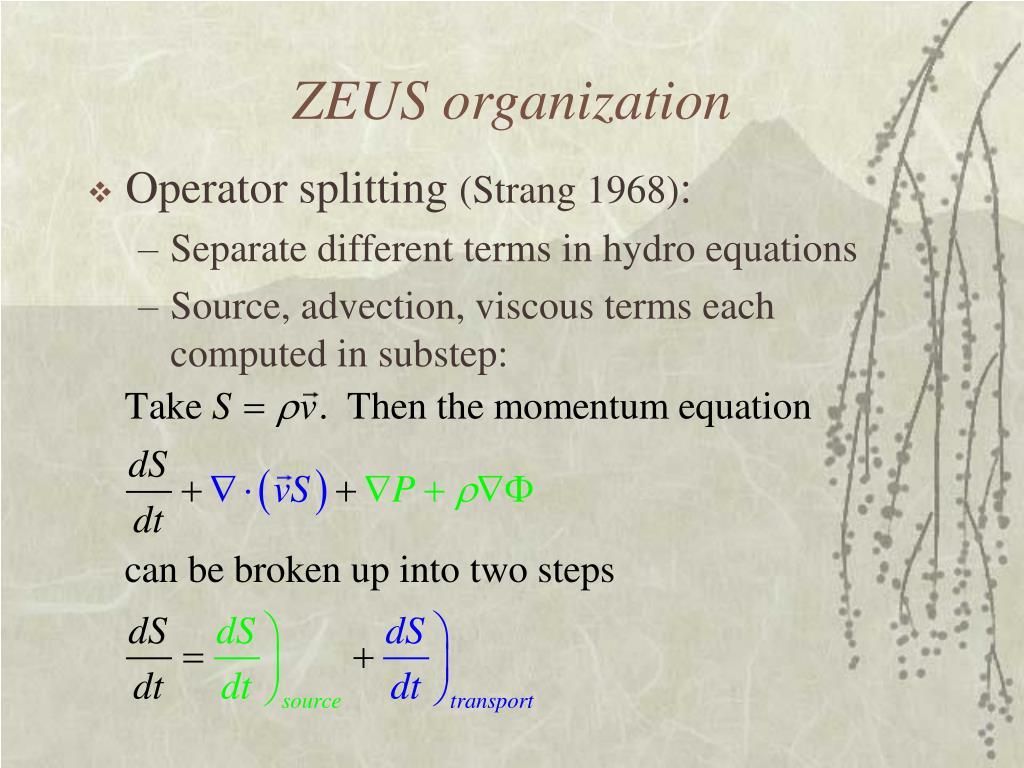 ZEUS organization