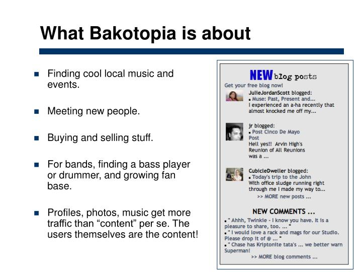 What Bakotopia is about