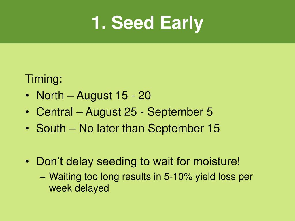 1. Seed Early