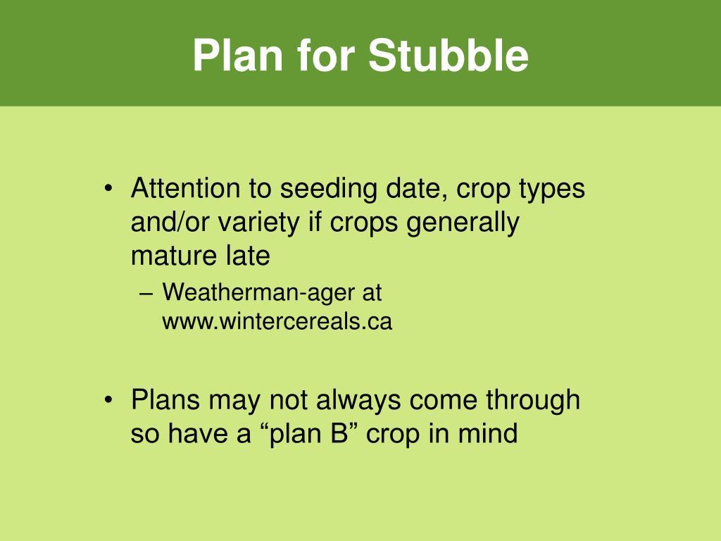 Plan for Stubble