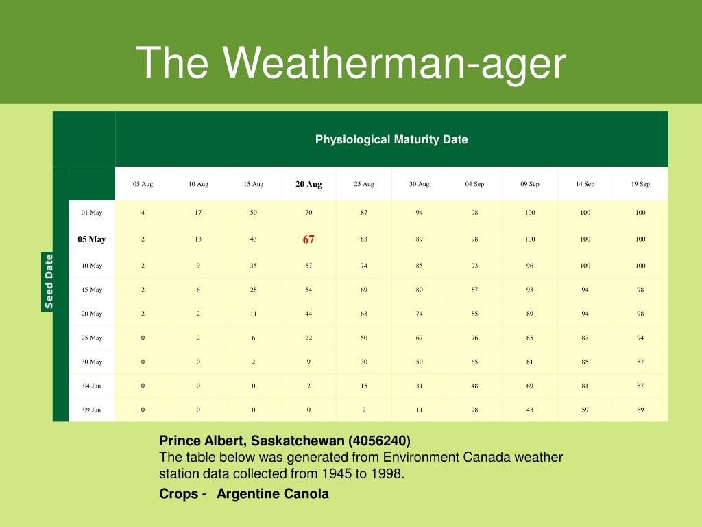 The Weatherman-ager