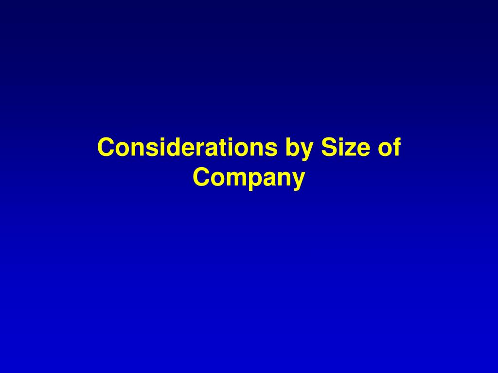 Considerations by Size of Company