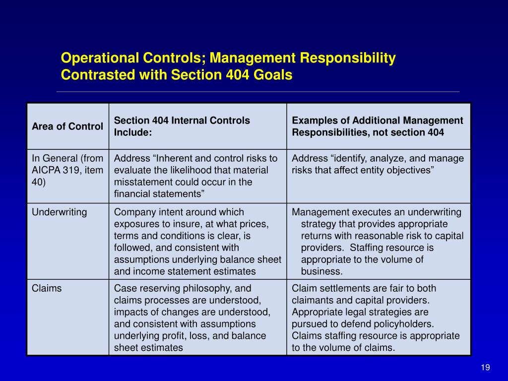 Operational Controls; Management Responsibility Contrasted with Section 404 Goals