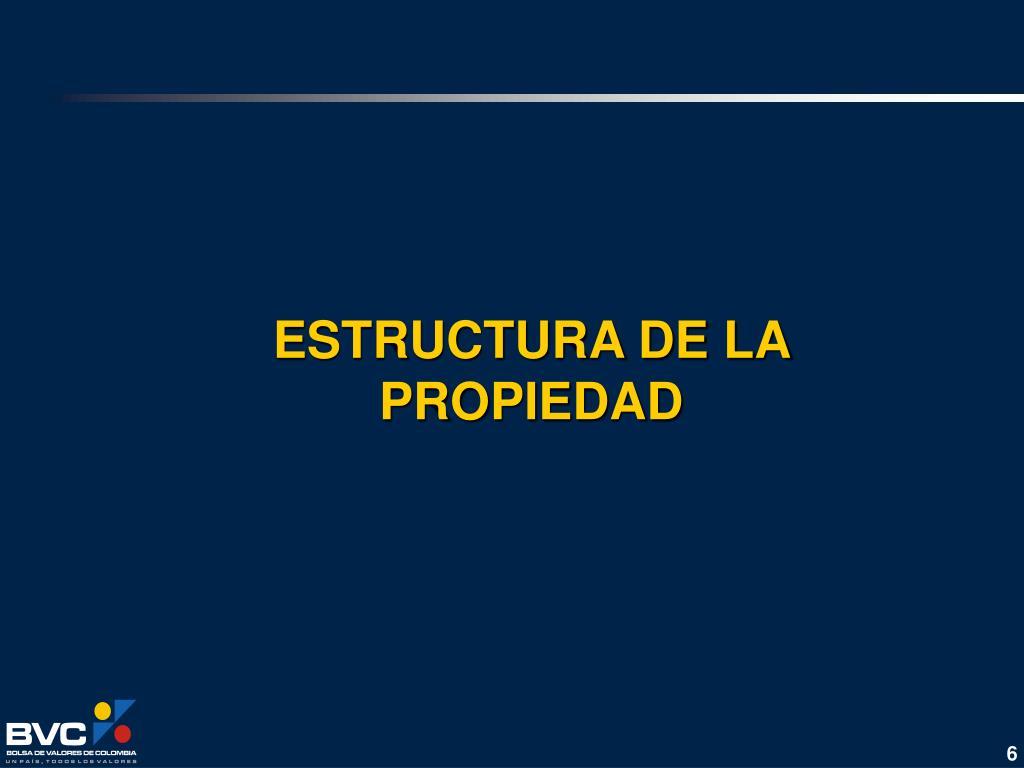 ESTRUCTURA DE LA PROPIEDAD