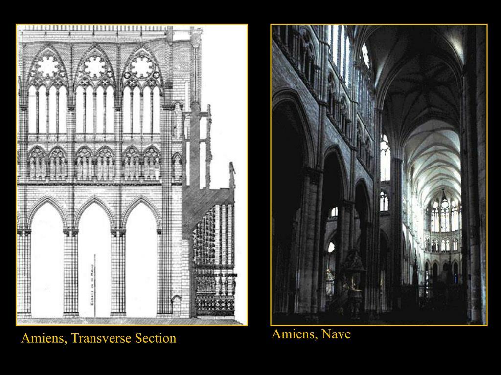 Amiens, Nave