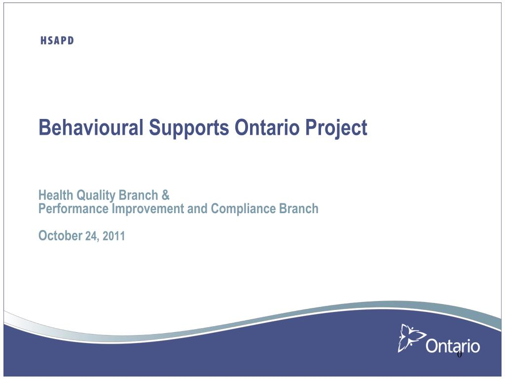Behavioural Supports Ontario Project