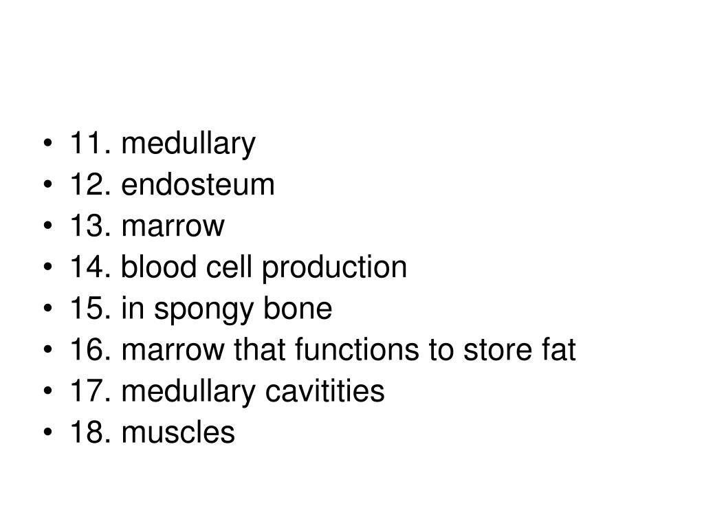 11. medullary