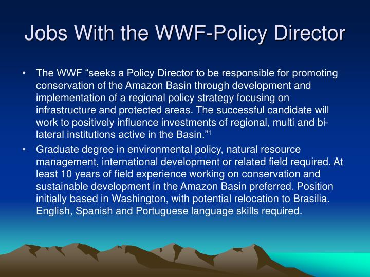 Jobs With the WWF-Policy Director