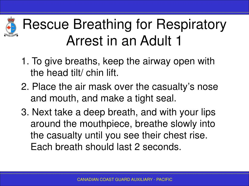 Rescue Breathing for Respiratory Arrest in an Adult 1