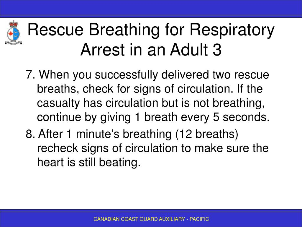 Rescue Breathing for Respiratory Arrest in an Adult 3