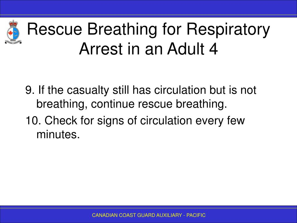 Rescue Breathing for Respiratory Arrest in an Adult 4