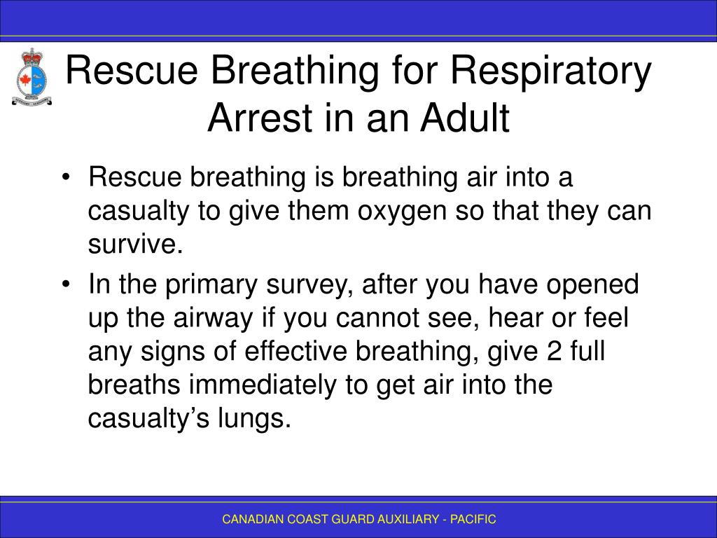 Rescue Breathing for Respiratory Arrest in an Adult