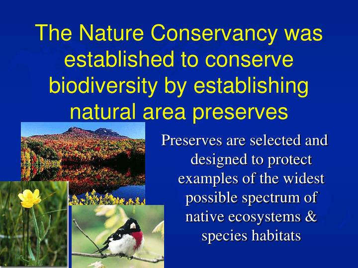 The Nature Conservancy was established to conserve biodiversity by establishing natural area preserv...