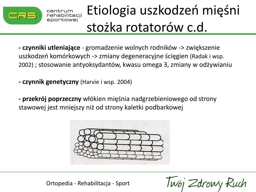 Etiologia uszkodzeń mięśni stożka rotatorów c.d.
