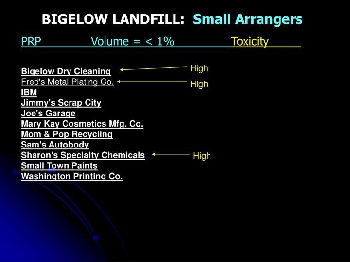 BIGELOW LANDFILL: