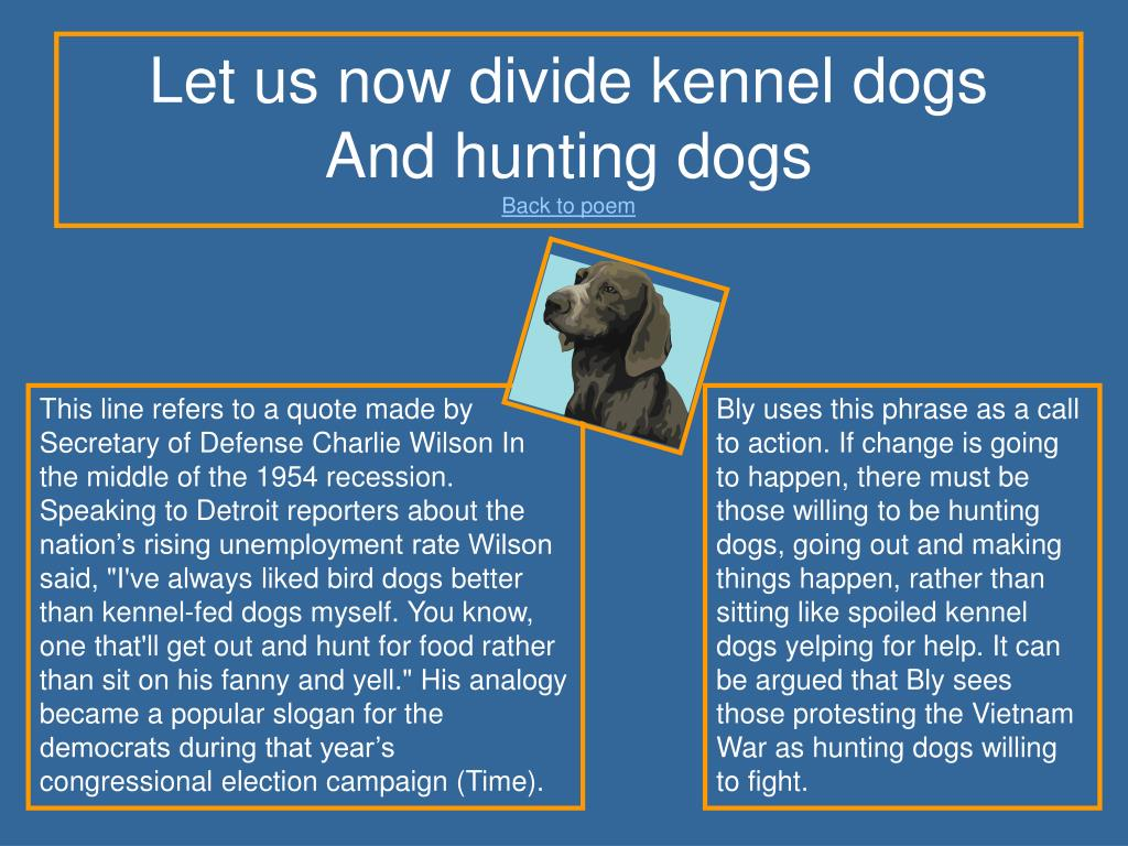 Let us now divide kennel dogs