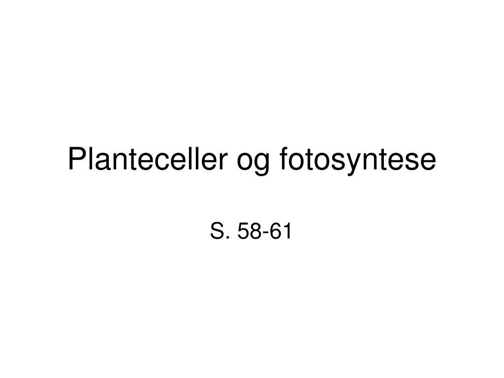 Planteceller og fotosyntese