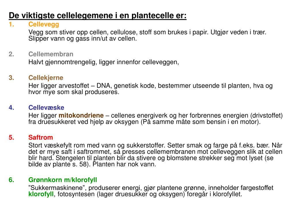 De viktigste cellelegemene i en plantecelle er: