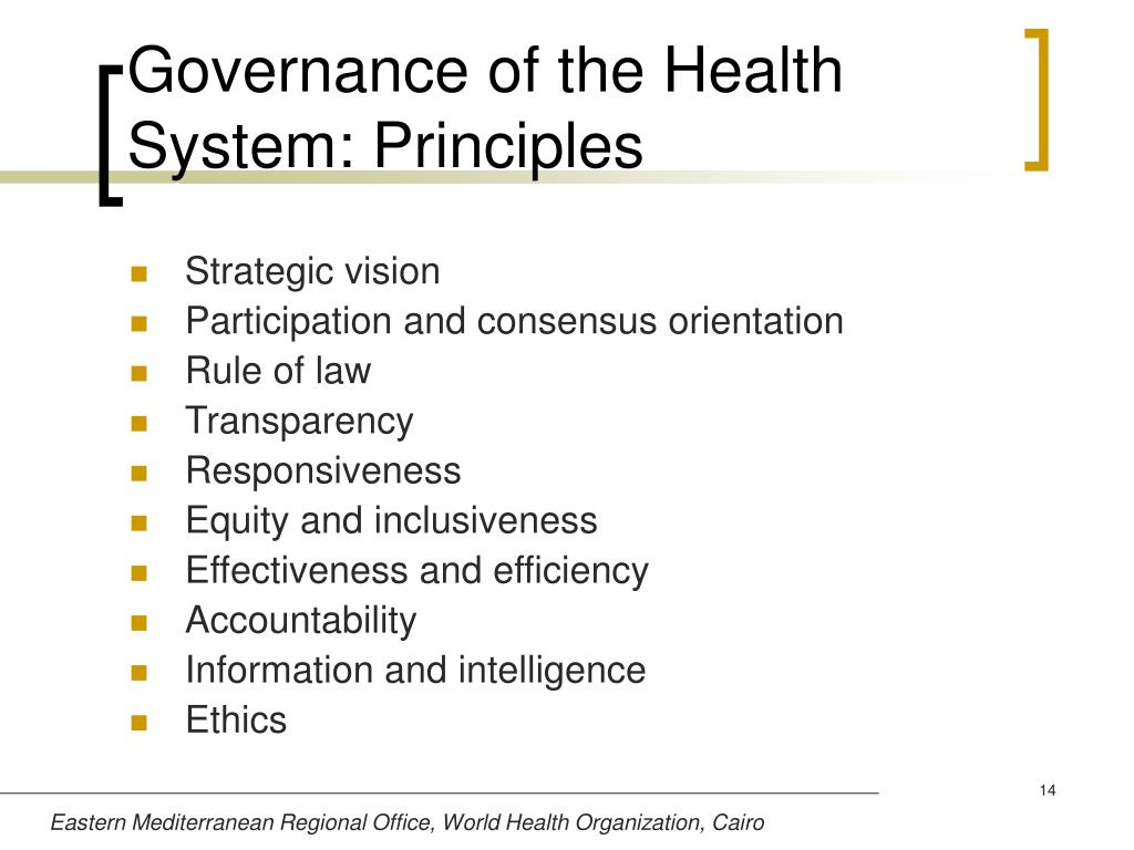 Governance of the Health System: Principles
