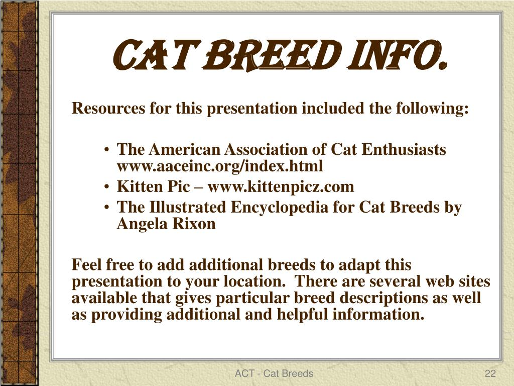 Cat Breed info.