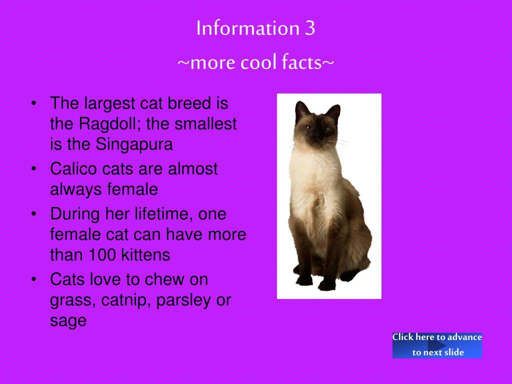Information 3