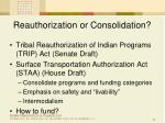 reauthorization or consolidation