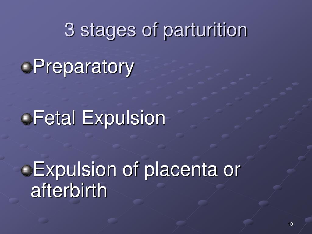 3 stages of parturition