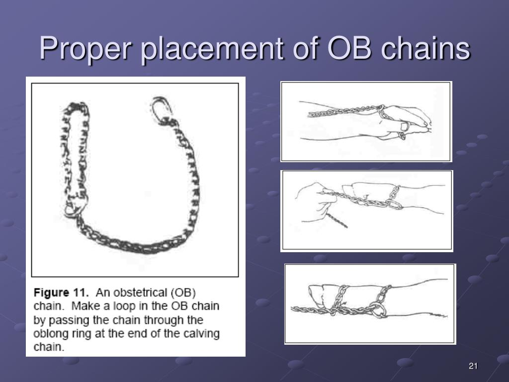 Proper placement of OB chains