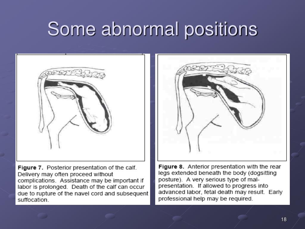 Some abnormal positions