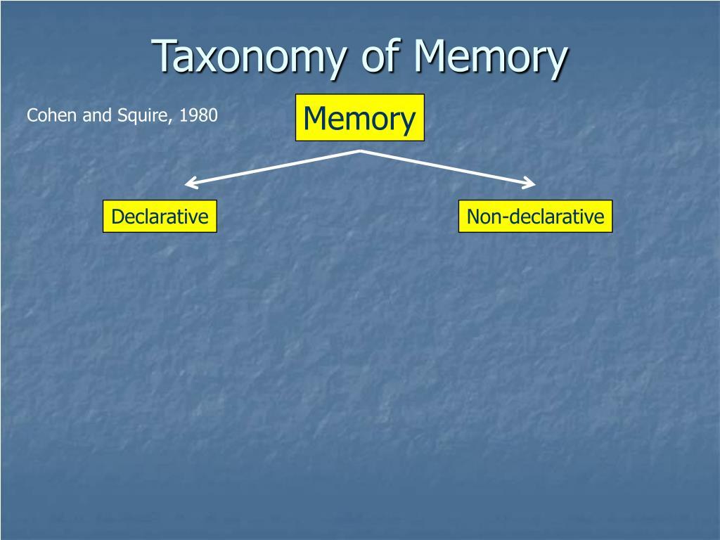 Taxonomy of Memory