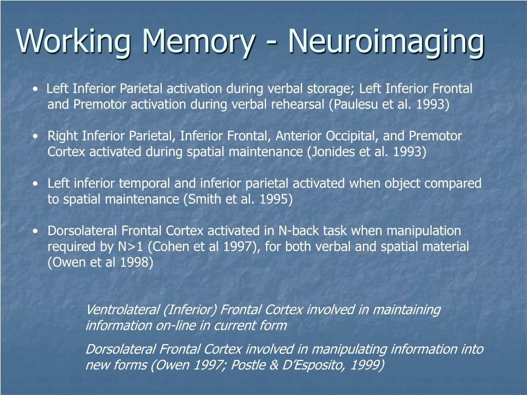 Working Memory - Neuroimaging