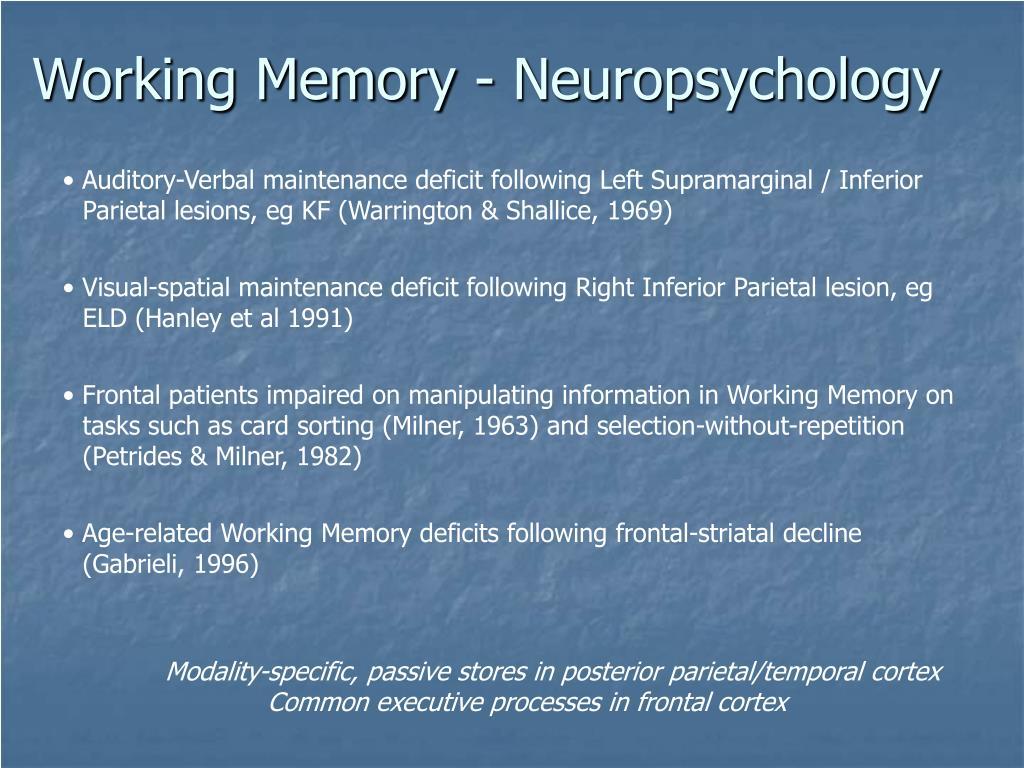 Working Memory - Neuropsychology