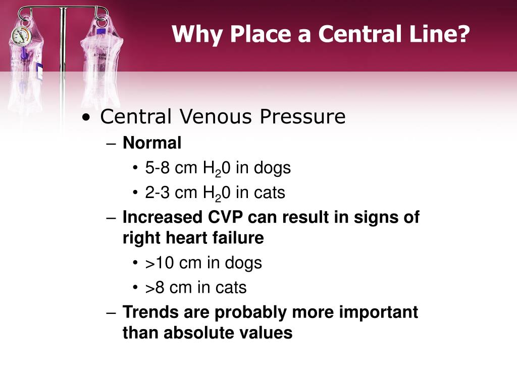 Why Place a Central Line?