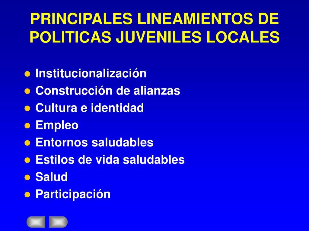 PRINCIPALES LINEAMIENTOS DE