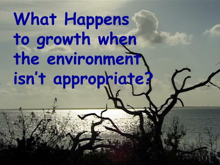 What happens to growth when the environment isn t appropriate