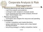 corporate analysis risk management