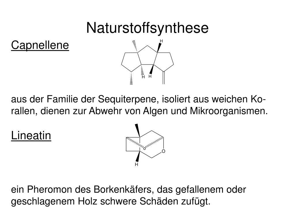 Naturstoffsynthese
