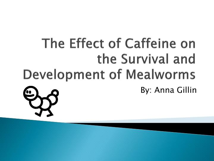 the effects of caffeine on the Caffeine is a stimulatory anti-sleep compound extracted from coffee beans habitual caffeine use leads to tolerance, which dulls several of caffeine's effects.