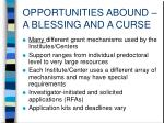 opportunities abound a blessing and a curse