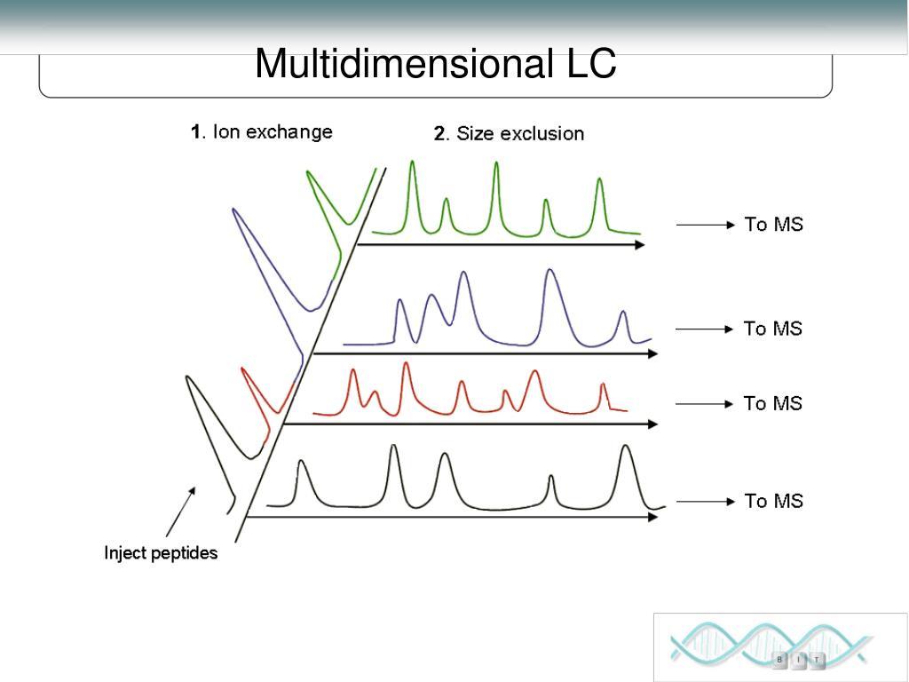 Multidimensional LC