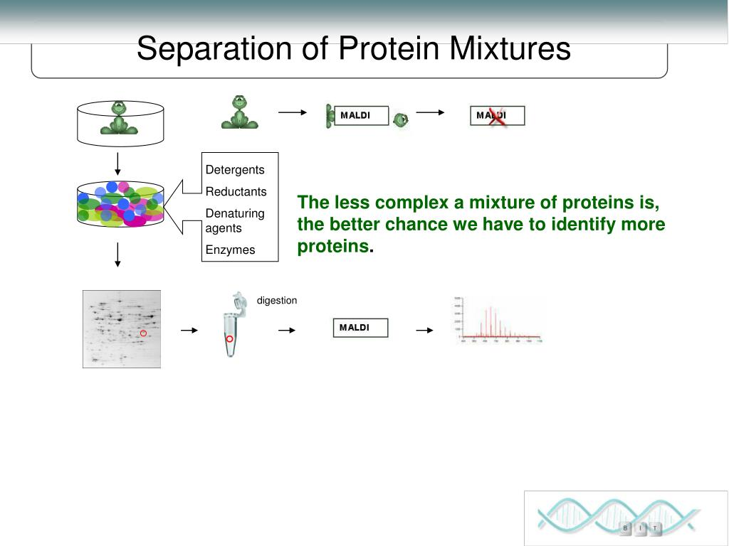 Separation of Protein Mixtures